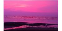 Bordi is amongst 12 Best Beaches in Maharashtra